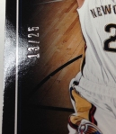 Panini America 2013-14 Pinnacle Basketball QC (34)