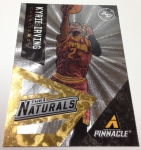 Panini America 2013-14 Pinnacle Basketball QC (44)