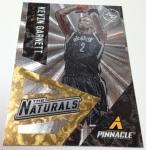 Panini America 2013-14 Pinnacle Basketball QC (46)