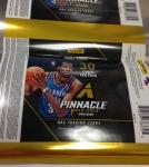 Panini America 2013-14 Pinnacle Basketball QC (5)