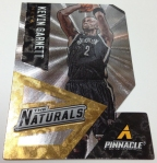 Panini America 2013-14 Pinnacle Basketball QC (67)