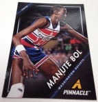 Panini America 2013-14 Pinnacle Basketball QC (8)