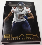 Panini America 2013 Black Football Teaser (42)