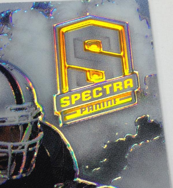 Panini America 2013 Spectra Football QC (44)