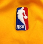 Panini America 2013-14 Immaculate Basketball Shorts (27)