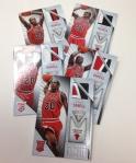 Panini America 2013-14 Titanium Basketball Retail Rookies (43)