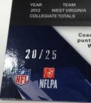 Panini America 2013 Spectra Football Teaser (20)