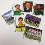 Panini America 2014 FIFA World Cup Brazil Sticker Teaser (7)
