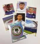 Panini America 2014 FIFA World Cup Brazil Sticker Teaser (9)
