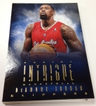 Panini America 2013-14 Intrigue Basketball Teaser (44)