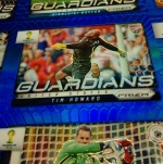 Panini America 2014 FIFA World Cup Brazil Prizm Blues (23)