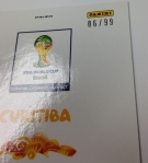Panini America 2014 FIFA World Cup Brazil Prizm Inserts Part One (51)