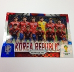 Panini America 2014 FIFA World Cup Brazil Prizm Inserts Part One (63)