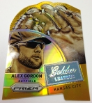 Panini America 2014 Prizm Baseball Golden Leather (14)