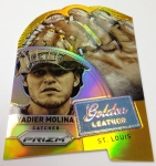 Panini America 2014 Prizm Baseball Golden Leather (3)