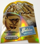 Panini America 2014 Prizm Baseball Golden Leather (8)