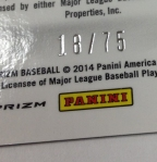 Panini America 2014 Prizm Baseball Teaser (47)