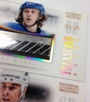 Panini America 2013-14 National Treasures Hockey Treasued Steel (14)