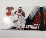 Panini America 2013-14 Preferred Basketball QC (28)