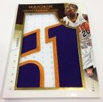 Panini America 2013-14 Immaculate Basketball Oversized (22)