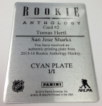Panini America 2013-14 National Treasures Hockey Teaser (26)