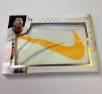 Panini America 2013-14 Immaculate Basketball Sneak Peek Anthony Davis (4)