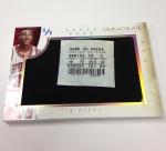 Panini America 2013-14 Immaculate Basketball Sneak Peek Scottie Pippen (3)