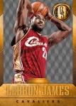 Panini America 2014-15 Gold Standard Basketball Veteran Variations (1a)