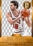 Panini America 2014-15 Gold Standard Basketball Veteran Variations (2)