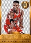 Panini America 2014-15 Gold Standard Basketball Veteran Variations (8)