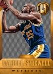 Panini America 2014-15 Gold Standard Basketball Veteran Variations (9a)