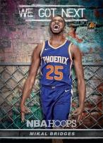 Panini America 2018-19 NBA Hoops We Got Next 10