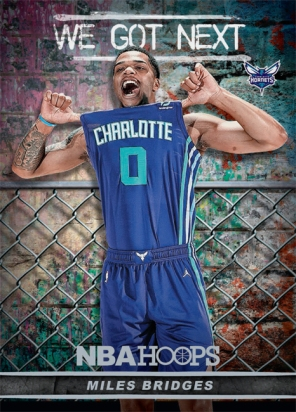 Panini America 2018-19 NBA Hoops We Got Next 12