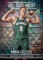 Panini America 2018-19 NBA Hoops We Got Next 17