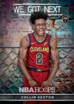Panini America 2018-19 NBA Hoops We Got Next 8