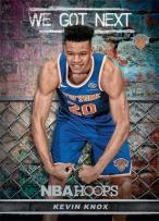 Panini America 2018-19 NBA Hoops We Got Next 9